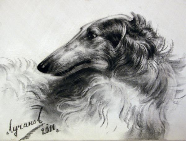 Сайт Полины и Дмитрия Лучановых. портрет собаки заказать